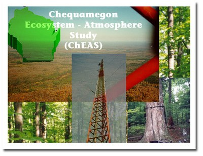ChEAS Logo