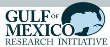 Gulf of Mexico Research Initiative Logo