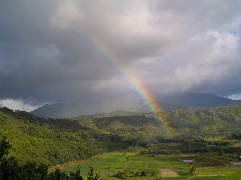 Nathan Lis Rainbow over Hanalei Valley